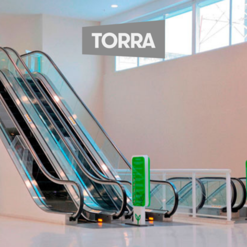 Lojas Torra